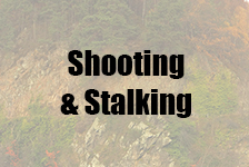 Shooting & Stalking in Speyside & Moray, Scotland